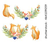 Watercolor Set  Fox And A...