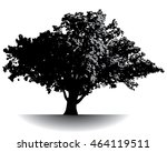spectacular ancient tree | Shutterstock .eps vector #464119511