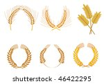 Set of cereal wreaths as an agriculture concept or logo template. Vector version is also available - stock photo