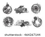 set hand drawn vector... | Shutterstock .eps vector #464267144