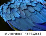 An Amazing Blue Background Of...