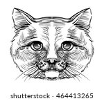 serious head cute cat  stylish... | Shutterstock .eps vector #464413265