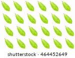 green leaves pattern in white... | Shutterstock . vector #464452649