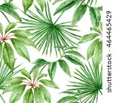palm leaves. exotic foliage.... | Shutterstock . vector #464465429