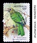 Small photo of AUSTRALIA - CIRCA 2009: A stamp printed in Australia shows Green Catbird - Ailuroedus crassiostis, circa 2009