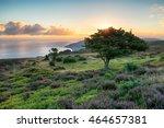 sunrise over porlock common on... | Shutterstock . vector #464657381