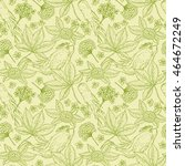 medicinal plants seamless... | Shutterstock .eps vector #464672249