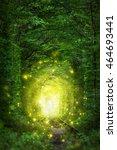 Fantastic Trees Scene  Tunnel...