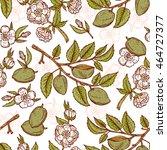 hand drawn almond seamless... | Shutterstock .eps vector #464727377