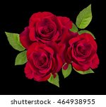red rose isolated on the black  ... | Shutterstock . vector #464938955
