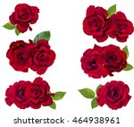 Stock photo red rose isolated on the white background 464938961