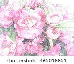 pink roses in vase pencil color ... | Shutterstock . vector #465018851
