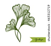 ginkgo biloba leaves with title.... | Shutterstock .eps vector #465312719