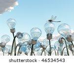 bulb field - stock photo