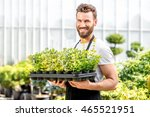 portrait of a handsome gardener ... | Shutterstock . vector #465521951