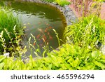 Beautiful Human Made Pond With...