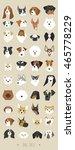 dogs face vector illustration | Shutterstock .eps vector #465778229