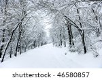 winter road covered with fresh... | Shutterstock . vector #46580857
