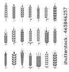 wheat ears icons and logo set.... | Shutterstock .eps vector #465846257