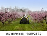 Cask Tractor Sprays A Chemical...