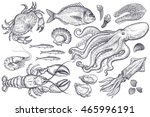 Vector set. Seafood crab, lobster, shrimp, fish, anchovies, oysters, scallops, octopus, squid, mussels, salmon. Illustration vintage style. Templates for design sea shops, restaurants, markets. | Shutterstock vector #465996191