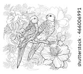 linear drawing of two parrots... | Shutterstock .eps vector #466006991