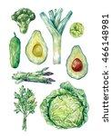 watercolor green vegetables... | Shutterstock . vector #466148981