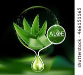 aloe vera collagen serum and... | Shutterstock .eps vector #466151165