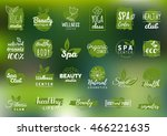 Vector health and beauty care logos or labels. Spa, yoga centers badges. Wellness signs. Hand drawn tags and elements set for organic cosmetics, natural products. | Shutterstock vector #466221635