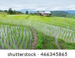 green terraced rice field in pa ... | Shutterstock . vector #466345865
