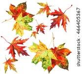 autumn maple leaves set... | Shutterstock . vector #466405367