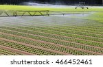 automatic irrigation system of...   Shutterstock . vector #466452461
