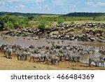 great migration in masai mara ... | Shutterstock . vector #466484369