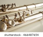 two flute   Shutterstock . vector #466487654