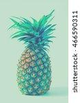 vintage ripe whole pineapple. | Shutterstock . vector #466590311