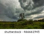 Thunderclouds Over A Tree....