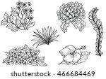 hand drawn tropical flower... | Shutterstock .eps vector #466684469