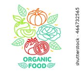 organic food  fruit and... | Shutterstock .eps vector #466732565