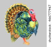 isolated watercolor turkey on... | Shutterstock . vector #466777967