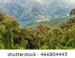 cloud forest in national park... | Shutterstock . vector #466804445