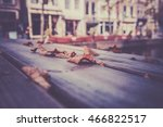 Fallen Autumn Leaves On A...