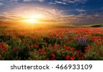 fantastic sunset at the poppies ... | Shutterstock . vector #466933109