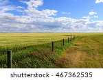 Long Fence In A Prairie...