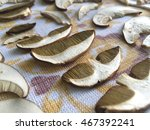 Small photo of drying porcini slices
