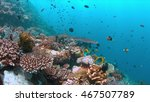 colorful coral reef with... | Shutterstock . vector #467507789