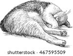 domestic cat sleeping | Shutterstock .eps vector #467595509