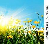 flower field blue sky and sun. | Shutterstock . vector #46762402