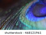 peacock feather closeup | Shutterstock . vector #468121961