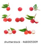 set of fresh lychee and leaves... | Shutterstock . vector #468305309
