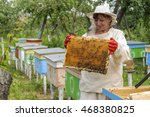 Woman Beekeeper Looks After...